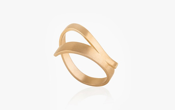 COLOR & FORM DOUBLE STRIPE RING